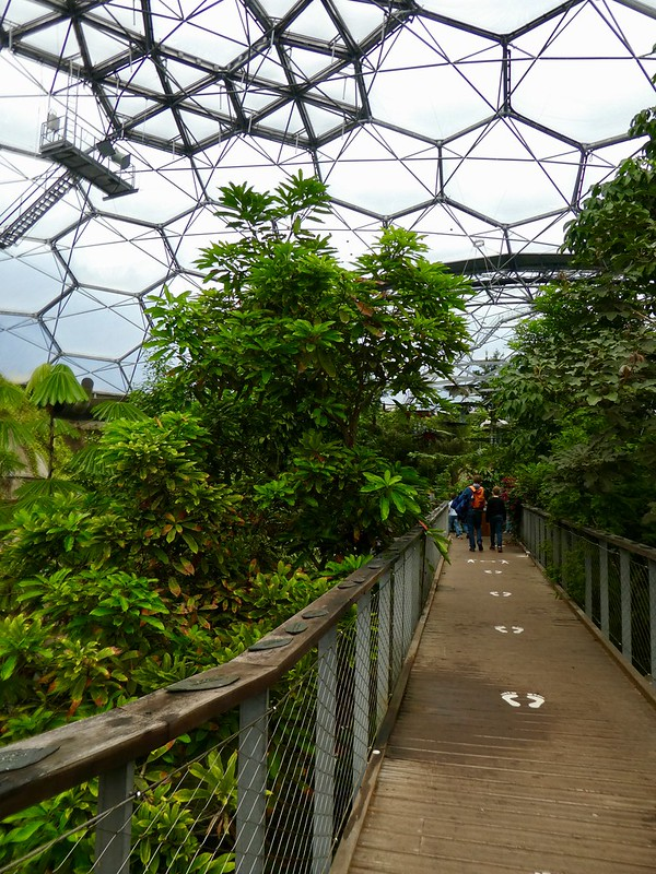 Inside the biome at the Eden Project