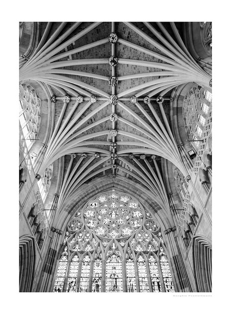 Exeter cathedral ribs
