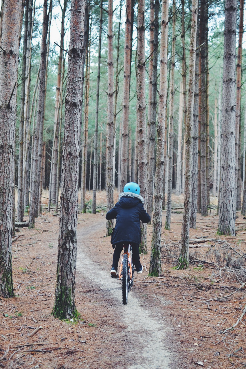 Biking in the woods 2020