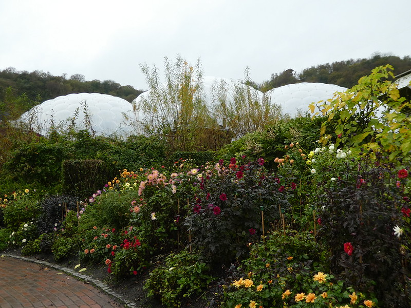 The landscaped gardens, Eden Project