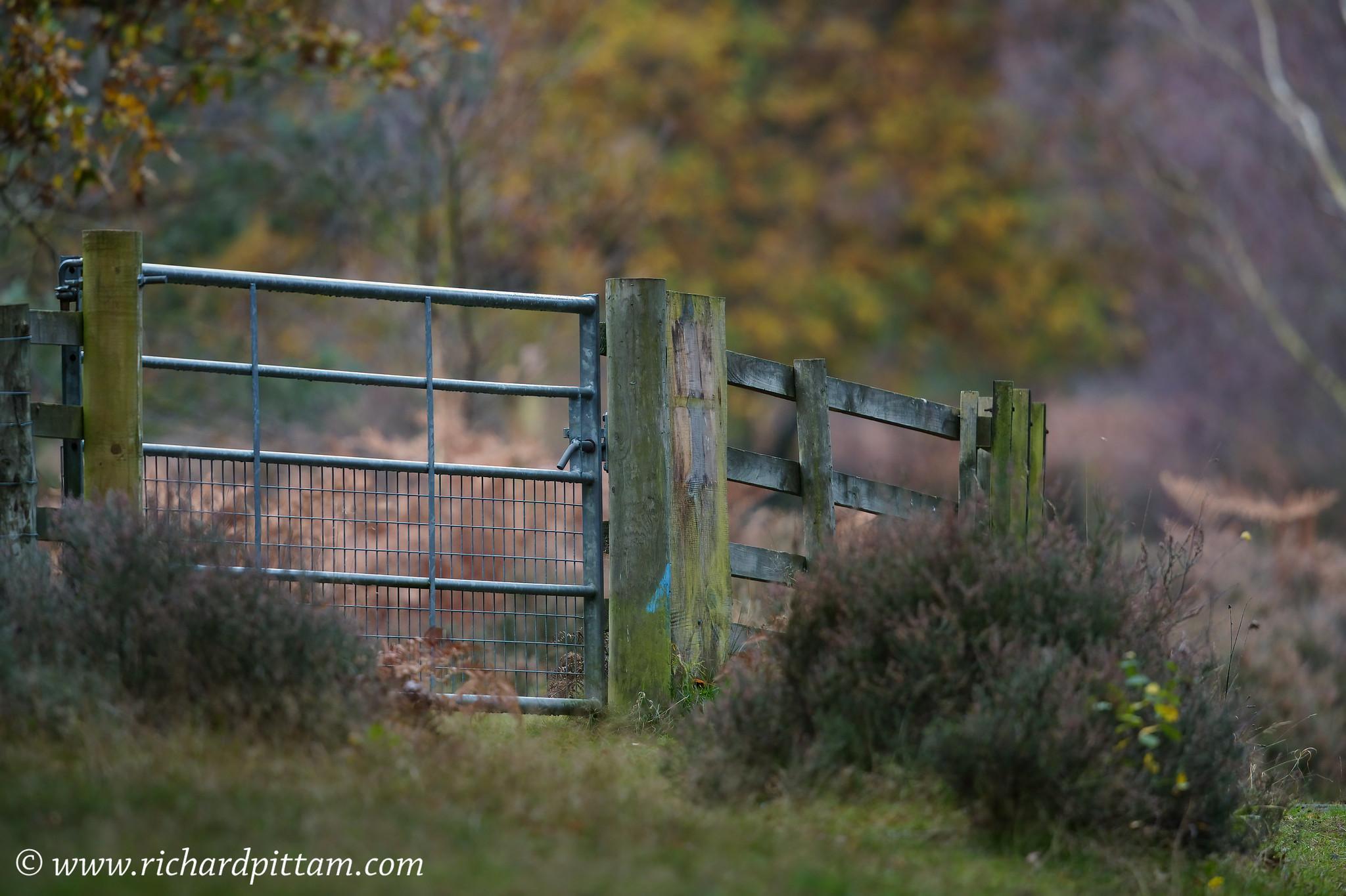 Gates everywhere....