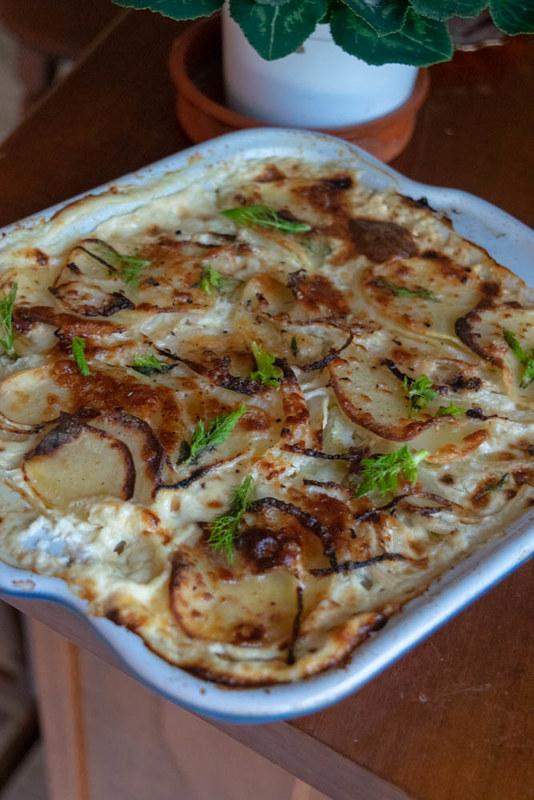 Gratin de pommes de terre aux anchois et fenouil_