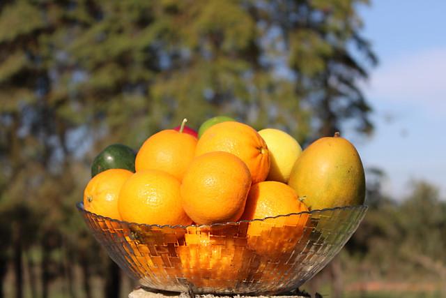 Oranges in fruit bowl