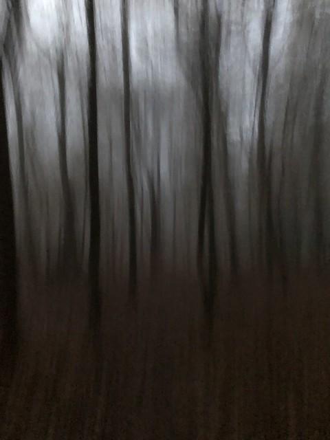 Nebelspuren I