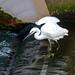 201103 Onda River-03.jpg