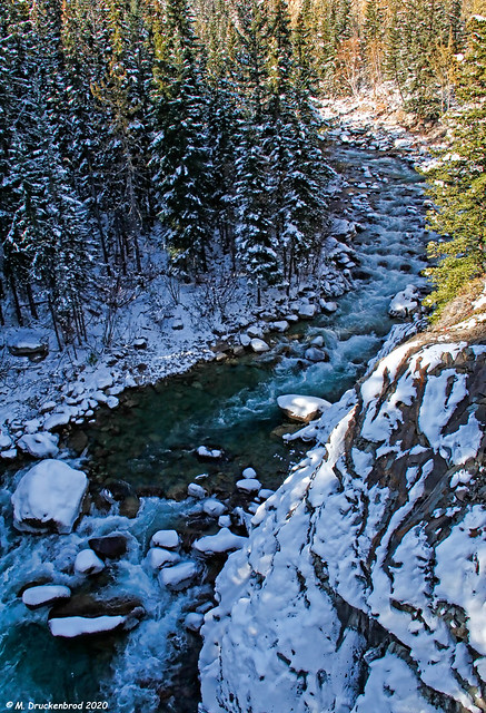 A Mountain Stream along the Icefields Parkway in Jasper National Park, Alberta, Canada