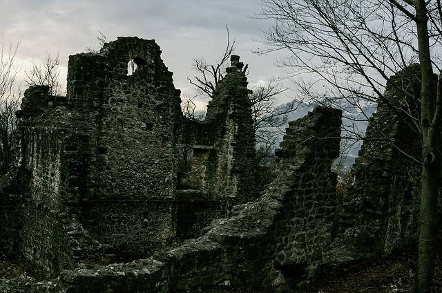 _ruine_neuburg_altach