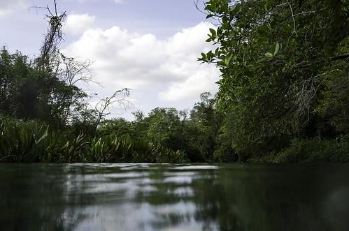 Rio Sucuri