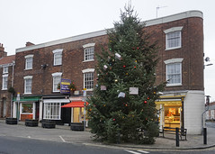 Hedon Christmas Tree 2020