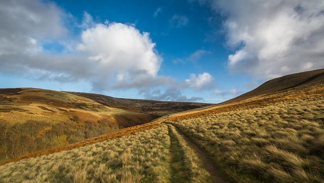 Upper Derwent Moors