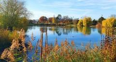L'ancien lac de canotage en automne