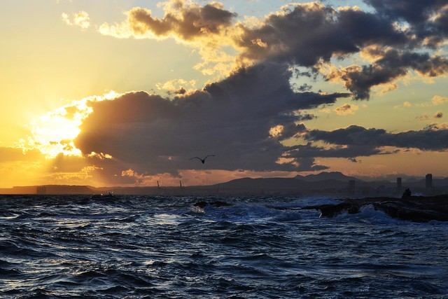 Tempestad en el mar 🌊 2