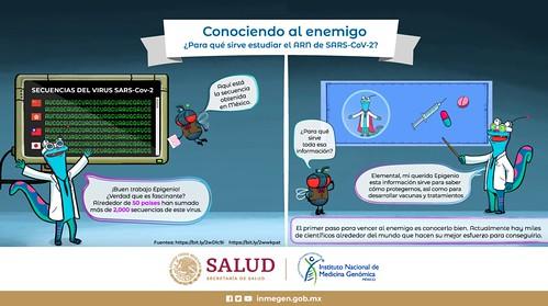 Infografías sobre COVID-19