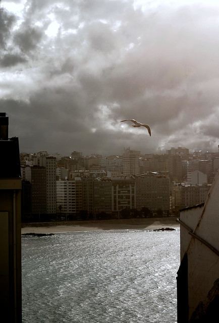 Coruña by day - Room with a view. Flying away.
