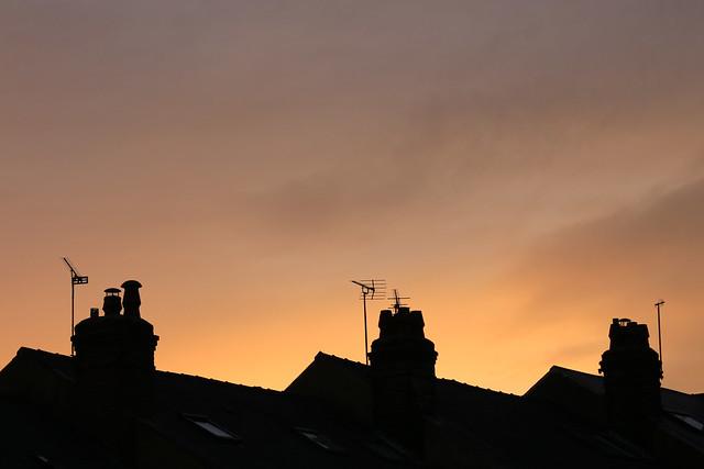 Sunset Silhoutte