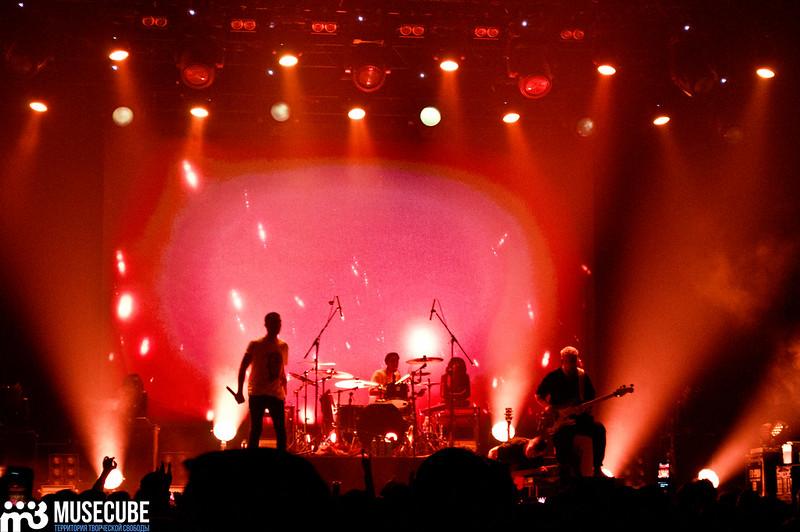rock_privet-13