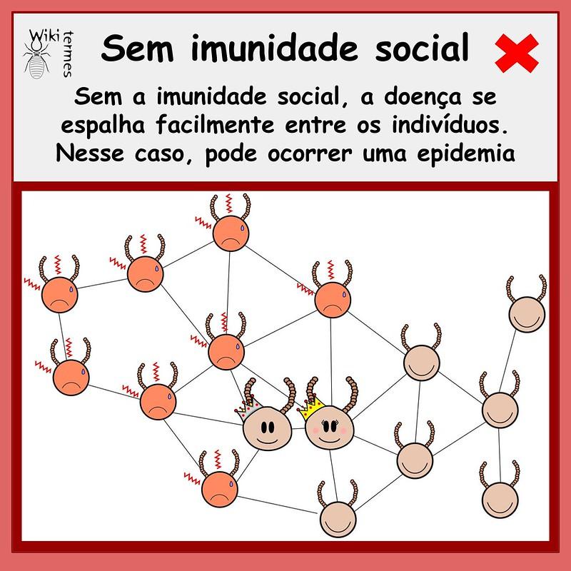 Vacinas (4)