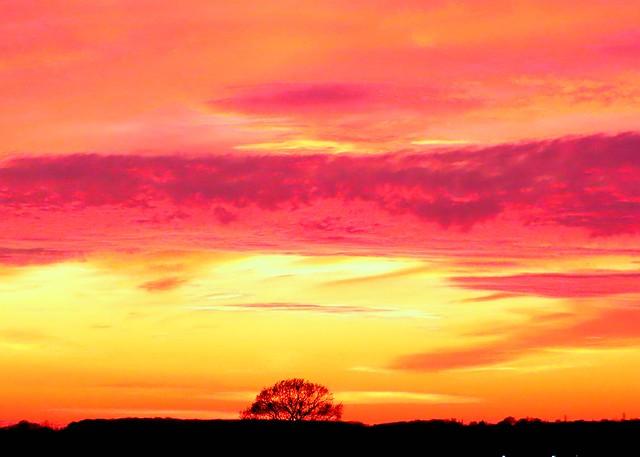 Mundon Sunset
