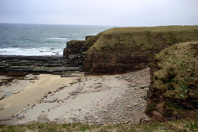 The coast at Auckengill