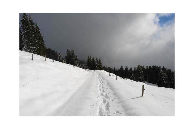 End of October and perfect conditions for snowshoeing