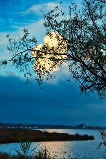 La lagune des Ayguades