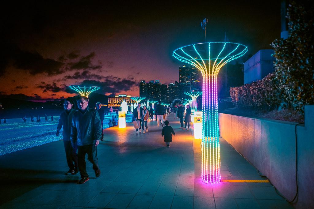Christmas in Korea | Busan Christmas Tree Light Festival