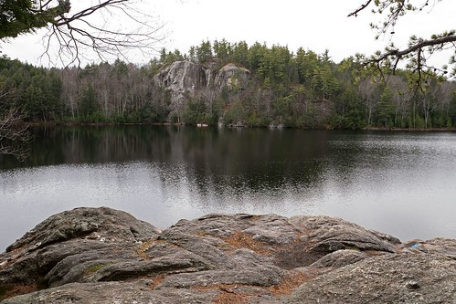 pond ledge water tranquil forest trees wilderness