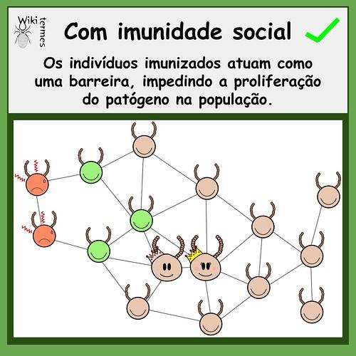 Vacinas (3)
