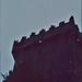 """<p><a href=""""https://www.flickr.com/people/168196594@N04/"""">Gilloubu</a> posted a photo:</p>  <p><a href=""""https://www.flickr.com/photos/168196594@N04/50643830188/"""" title=""""Blarney Castle - Irlande""""><img src=""""https://live.staticflickr.com/65535/50643830188_528d7dc835_m.jpg"""" width=""""162"""" height=""""240"""" alt=""""Blarney Castle - Irlande"""" /></a></p>  <p>Blarney Castle (XIème/XVème siècles) - Blarney - Comté de Cork - Munster - Irlande<br /> <br /> Diapositive de 08/1977 scannée avec un Plustek OpticFilm 8200i et le logiciel SilverFast 8.</p>"""