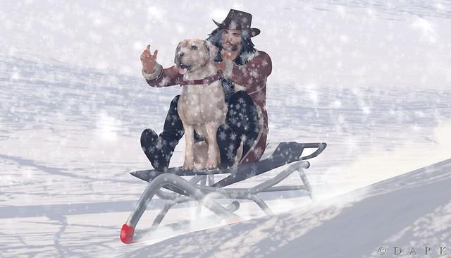 sleigh ride FOCUS Contest