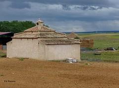Palomares. San Esteban del Molar. Zamora.