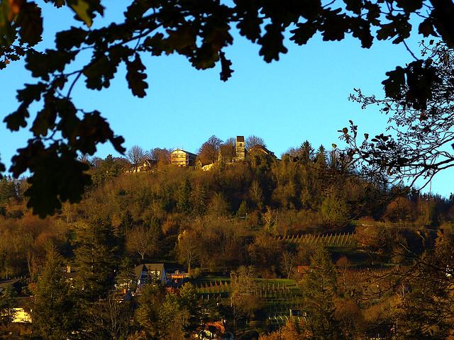 Tüllingen & Some Vineyards, Post-Harvest