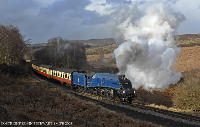 LNER Class A4 No 60007 'Sir Nigel Gresley'  passing Eller Beck on 12th March 2008
