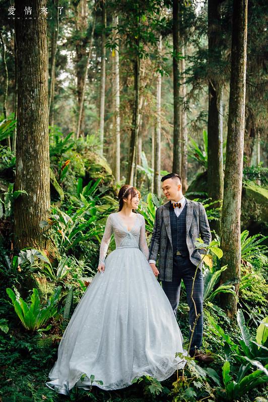 台中婚紗工作室,amor愛情來了婚紗,溪頭婚紗,妖怪村,輕婚紗,小清新婚紗-240-1