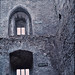 """<p><a href=""""https://www.flickr.com/people/168196594@N04/"""">Gilloubu</a> posted a photo:</p>  <p><a href=""""https://www.flickr.com/photos/168196594@N04/50644579701/"""" title=""""Blarney Castle - Irlande""""><img src=""""https://live.staticflickr.com/65535/50644579701_c5c14776cc_m.jpg"""" width=""""161"""" height=""""240"""" alt=""""Blarney Castle - Irlande"""" /></a></p>  <p>Blarney Castle (XIème/XVème siècles) - Blarney - Comté de Cork - Munster - Irlande<br /> <br /> Diapositive de 08/1977 scannée avec un Plustek OpticFilm 8200i et le logiciel SilverFast 8.</p>"""