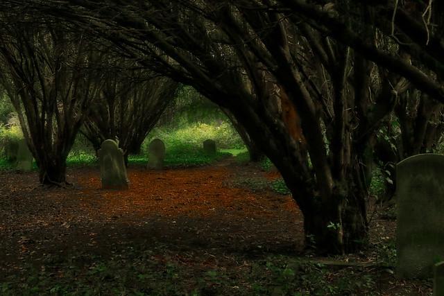 Ann's Hill Cemetery, Gosport