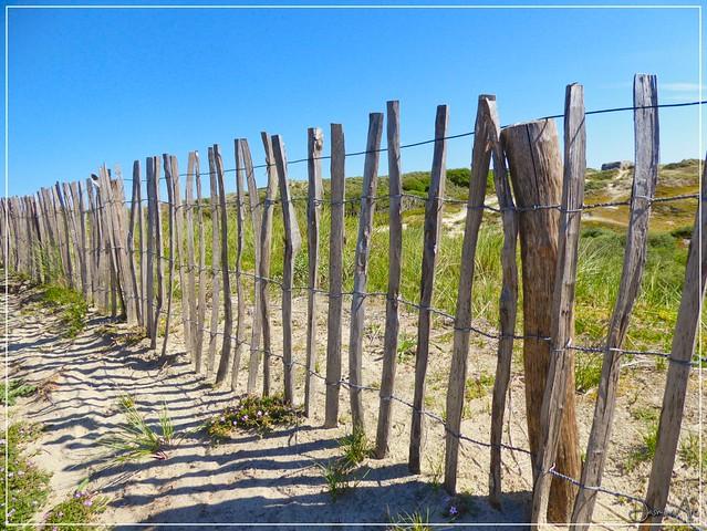 +way to the beach+