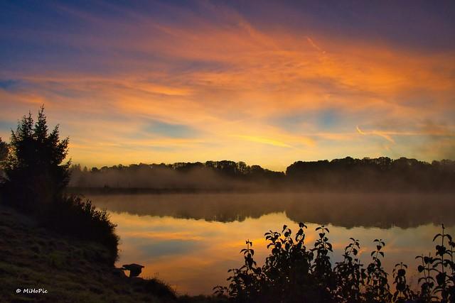 Foggy Morning (explore 11 25th 2020)