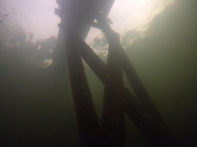 29 DEC 2020 Jules Lagoon Shore Dives