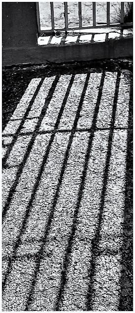 Sombras (Shadows)