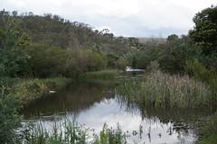 crossing the river below the dam