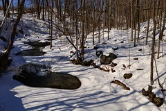 Shadows on the snow - Silver Creek, Halton Hills, Ontario.