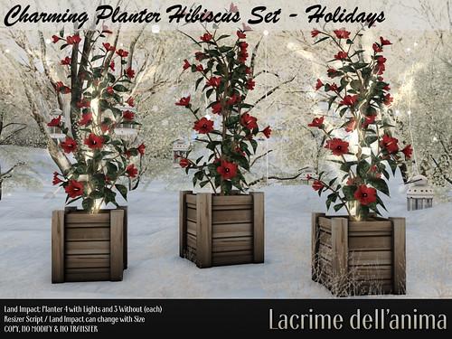 *Gift at Black Friday* Charming Planter Hibiscus Set - Holidays