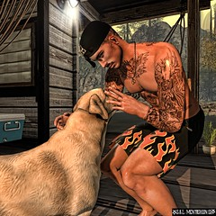 Dog love
