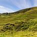 Isle of Skye_07Jul19_140039_15_5DIV-Pano_01