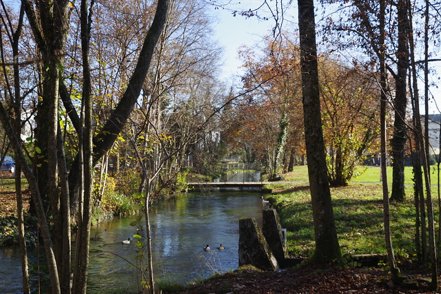 Herbststimmung im Schlosspark, Schloss Landshut