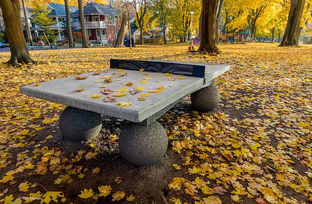Public ping pong table - Balmy Beach, Toronto