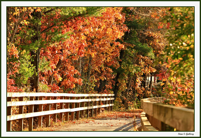 October - Autumn foliage along the bike path