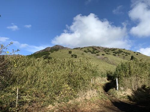 うぐいす茶屋分岐から山頂を望む