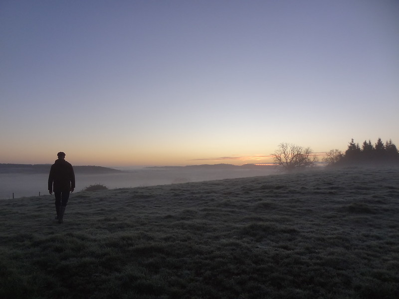 Frosty Morning, Phil on Thistly Field